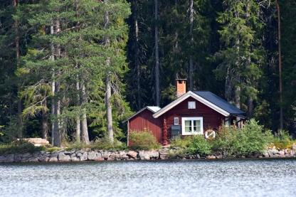 Dammkojan från sjön.